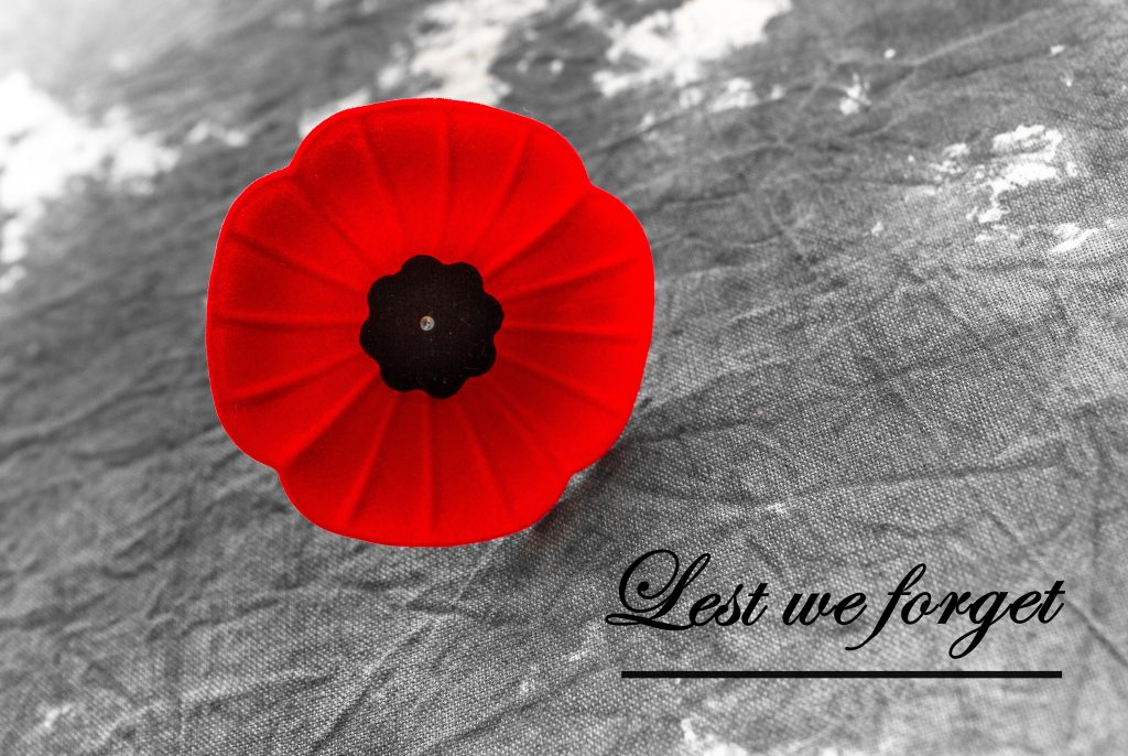 Stock image of a Poppy with 'Lest we forget...'